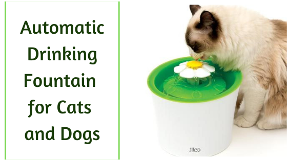 automatic drinking fountain for cats and dogs